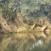 CKCA Location Cale de la Savatte Kayak et Stand Up Paddle Mayenne Angers